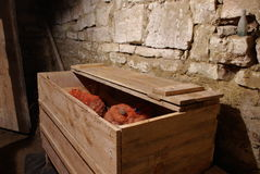 Potatoes in Granary Bin Royalty Free Stock Photography