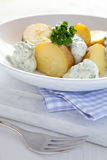 Potatoes and herb cheese Stock Images