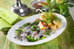 Potatoes with herring and dill on the table of Royalty Free Stock Images