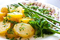 Potatoes with herring and greens Stock Images
