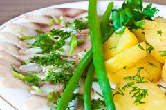 Potatoes with herring and greens Royalty Free Stock Image