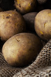 Potatoes in Hessian Sack Close Up Stock Photography