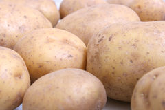 Potatoes III. A picture of a lot of potatoes Royalty Free Stock Photo