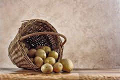 Potatoes In Basket Still Life Background Royalty Free Stock Images