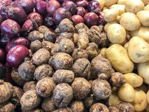 Potatoes and inhame in the market Stock Images