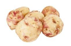 Potatoes isolated Royalty Free Stock Photo
