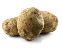 Potatoes isolated. Isolated photo of 3 fresh unwashed potatoes Royalty Free Stock Photo