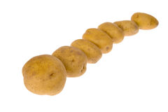 Potatoes isolated on white background. Some potatoes isolated on white background stock photo