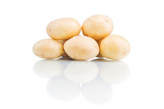 Potatoes isolated on white background. Close up Stock Images