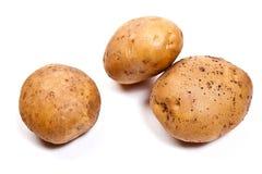 Potatoes isolated on white. Stock Photos