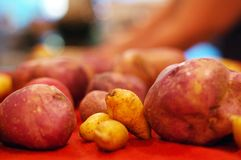 Potatoes on kitchen counter Stock Images