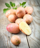 Potatoes with leaves Royalty Free Stock Images