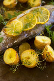 Potatoes And Lemon On Trout Fillet Stock Image