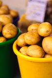 Potatoes at local market Royalty Free Stock Photo