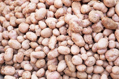 Potatoes at Market, Nepal Royalty Free Stock Photos