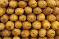 Potatoes in a market royalty free stock photography