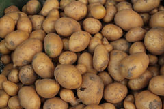Potatoes on market stand. Royalty Free Stock Photography