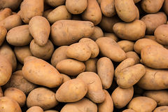 Potatoes at market. Royalty Free Stock Image