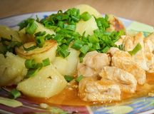 Potatoes with meat and green onions royalty free stock photography