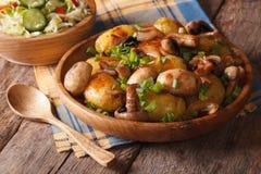 Potatoes with mushrooms close up and salad. Horizontal Stock Photos