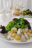 Potatoes with mushrooms and cream sauce Royalty Free Stock Photography