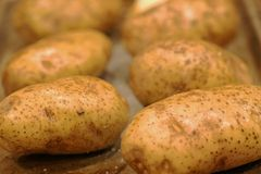 Potatoes with oil and salt being prepared for dinner stock photography