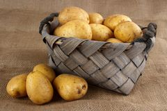 Potatoes in old basket Royalty Free Stock Photos