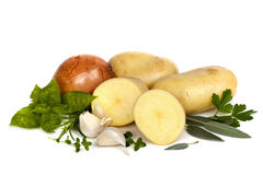 Potatoes Onions Garlic and Herbs over White. Raw potatoes, whole and cut, with brown onion, garlic cloves and herbs, isolated on white background Royalty Free Stock Images