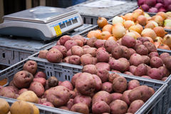 Potatoes, onions and radishes at a farmers market. Potatoes, onions and radishes in front of a scale at a farmers market in New York City Royalty Free Stock Photography