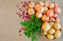 Potatoes and onions on the sacking. Top view. Vegetables. Potatoes and onions on the sacking. Top view Stock Photos