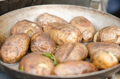 Potatoes in pan. Whole unpeeled potatoes cooking in a pan royalty free stock image