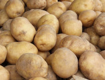 Potatoes pile Stock Photo