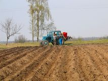 Potatoes planting. Agriculture - planting potatoes Stock Photography