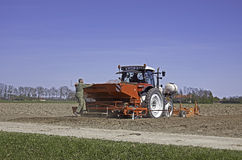 Potatoes planting with tractor Royalty Free Stock Photos