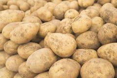 potatoes Pommes de terre fraîches Pommes de terre sur le marché Pommes de terre jaunes Fond de pommes de terre Photos libres de droits