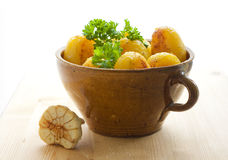 Potatoes in a pot Stock Images