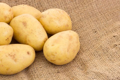 Potatoes on potato sack Stock Image
