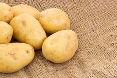 Potatoes on potato sack. Some potatoes on potato sack Stock Image