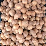 Potatoes. The potato is a starchy, tuberous crop from the perennial nightshade Solanum tuberosum. Potato may be applied to both the plant and the edible tuber Royalty Free Stock Photography