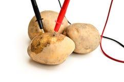 Potatoes power Royalty Free Stock Photos