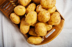 Potatoes raw Royalty Free Stock Image