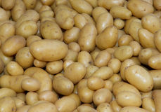 Potatoes raw vegetables food. Health background Stock Photo