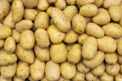 Potatoes raw vegetables. Food pattern in open market Stock Photos