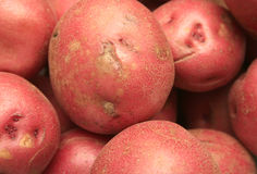 Potatoes. Red potatoes on display for advertisement Royalty Free Stock Images