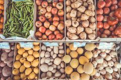 Potatoes Beside Red Round Vegetable Royalty Free Stock Image