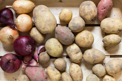 Potatoes and root vegetables Stock Photos