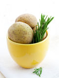 Potatoes and rosemary Stock Photo