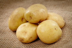 Potatoes on a rustic canvas Stock Images