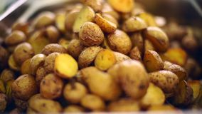 The potatoes are rustic laid out on a baking sheet. stock video footage