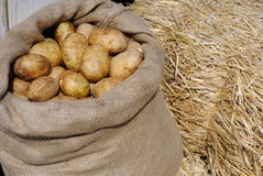 Potatoes in a Sack Royalty Free Stock Photos